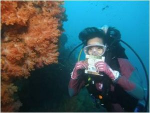 Coral researcher SCUBA diving on the reef.