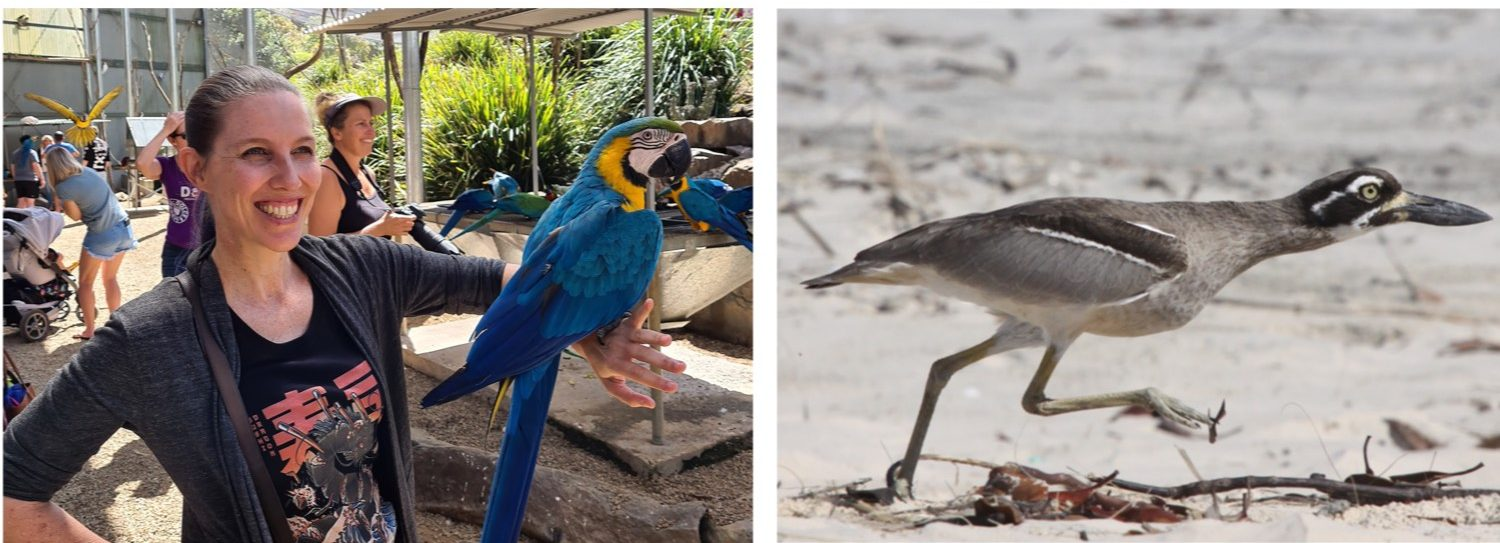 Jessica Drake at a bird park and a curlew