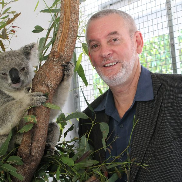 Peter Timms and koala
